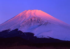 194 fuji mt Royaltyfri Foto