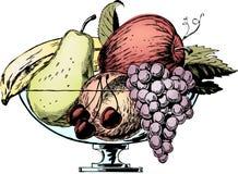 1950s bowl fruit vintage διανυσματική απεικόνιση