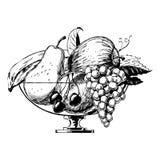 1950s bowl fruit vintage απεικόνιση αποθεμάτων