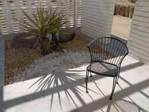 1950s Modernist garden: chair. 1950s style modernist garden chair and cacti Stock Photography