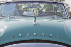 1951 Packard Convertible Head on View Stock Images