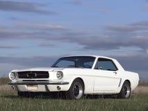 1967个美国人汽车经典马力 免版税库存图片