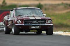 1967年motorsport野马 免版税库存图片