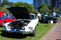 1967 de Mustang van de Doorwaadbare plaats van Shelby GT500 Royalty-vrije Stock Fotografie