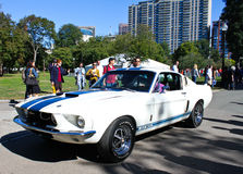 1967 de Mustang van de Doorwaadbare plaats van Shelby GT500 Royalty-vrije Stock Afbeelding