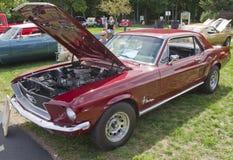1968年Ford Mustang 免版税库存图片