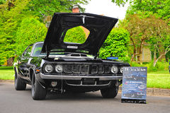 1971 Plymouth Cuda Stock Image