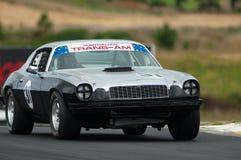 1974年camaro Lt motorsport 免版税库存图片