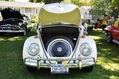 1976 de Kever van Volkswagen Stock Afbeeldingen