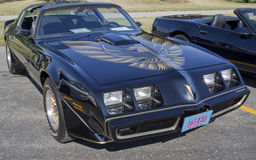 1980 Pontiac Firebird δια το AM Στοκ εικόνα με δικαίωμα ελεύθερης χρήσης
