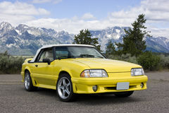1991 Ford Mustang Convertible Yellow Royalty Free Stock Photography