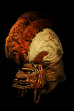19th Century Tatanua Ceremonial Mask Royalty Free Stock Photography