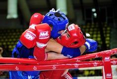 1ros juegos asiáticos 2009 de los artes marciales Imagen de archivo libre de regalías