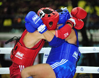1st asiatiska kampsportlekar 2009 Royaltyfri Bild