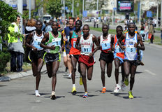 2ò Maratona de Belgrado Fotografia de Stock