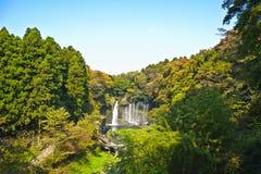 2个令人惊讶的秋天shiraito 图库摄影