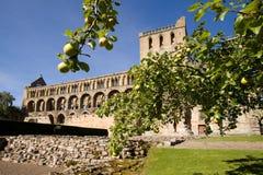 2个修道院jedburgh 库存图片