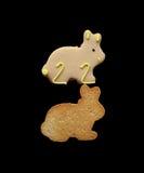 2个兔宝宝复活节二 免版税库存照片