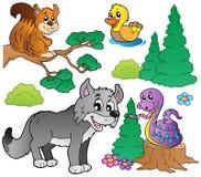 2个动物动画片森林集 免版税库存照片