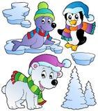 2个动物收集冬天 免版税库存图片