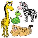 2个动物收集动物园 库存图片