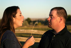 2个吹的夫妇亲吻 库存图片