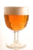 2个啤酒杯 库存图片