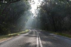 2个国家(地区)有雾的路 免版税库存照片