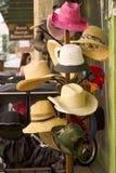 2个帽子结构树 免版税库存照片