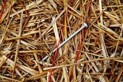 2个干草堆针 免版税库存图片