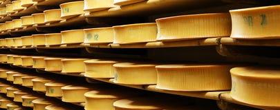 2个干酪 免版税库存图片