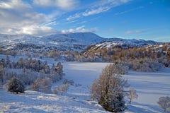2个方法小湖冬天 库存图片