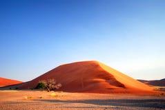 2个沙丘namib 库存图片