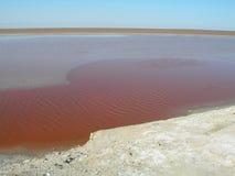 2个湖盐 库存照片