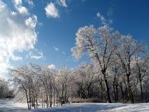2个线索冬天 库存图片