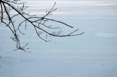 2个背景冬天 库存图片