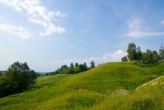 2个蓝色草横向天空结构树 库存图片