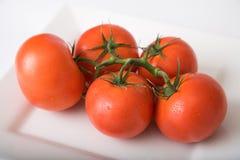 2个蕃茄 免版税库存照片