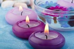2个蜡烛花紫色定了调子 免版税库存照片