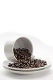 2个豆咖啡收集系列 免版税库存照片
