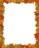 2个边界五颜六色的叶子 免版税库存图片