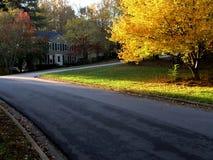 2个颜色秋天郊区居民 免版税库存照片