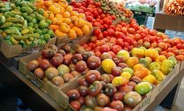 2个颜色蕃茄 免版税库存照片