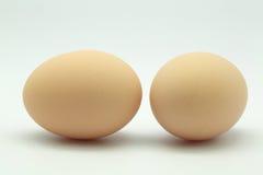 2个鸡蛋 库存照片
