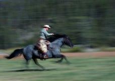 2位牛仔马骑术 免版税库存照片