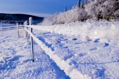 2冻结的范围 库存图片