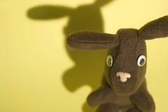 2只兔子黄色 库存图片