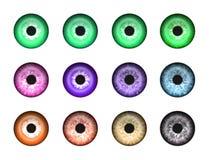 2只抽象眼睛 皇族释放例证