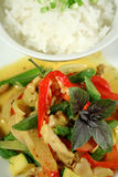 2只泰国鸡乳脂状的咖喱 免版税库存图片