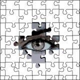 2只眼睛难题 免版税图库摄影